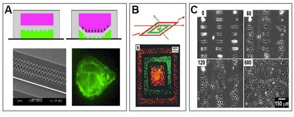 Microfluidic  - Substrate patterning using flow or active elements
