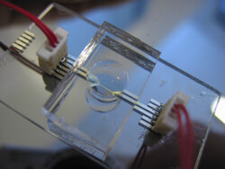 Microfluidic chip made of PDMS/glass with electrodes