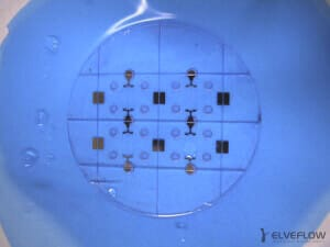 dicing-microchip-wafer