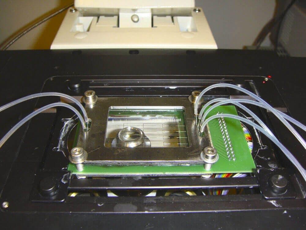 Microfluidic Reviews And Tutorials Elveflow