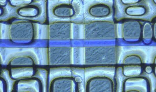 free copyright microfluidic device with nanoporous membrane