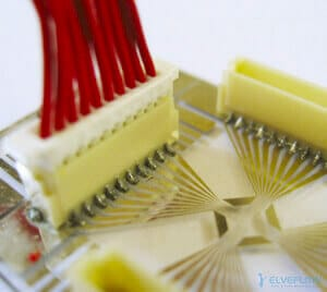 microdevice-electrode-array-neuron-culture