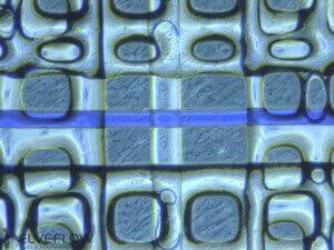 microfluidic-device-nanoporous-membrane