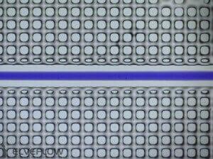 microfluidic-flow-control-channel-blue-dye