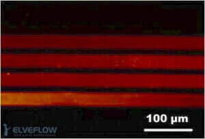quantum-dot-patterning-microfluidic-device