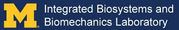 logo IBBL Biomechanics Laboratory