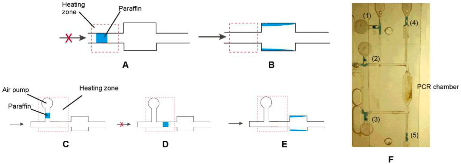 A Review of Heating and Temperature Control in Microfluidic Systems PCR 2