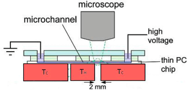 A Review of Heating and Temperature Control in Microfluidic Systems - gradient focusing