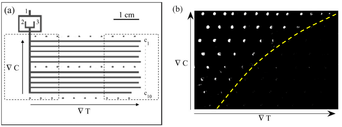 A Review of Heating and Temperature Control in Microfluidic Systems solubility diagram