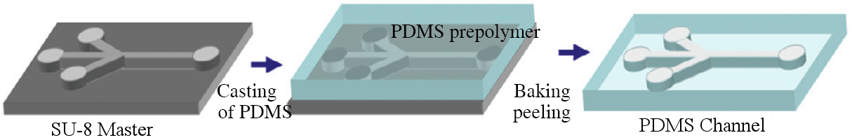 Microfluidic and PDMS soft lithography :  SU-8 master short process