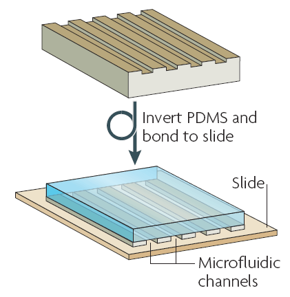 PDMS soft lithography microfluidics bonding