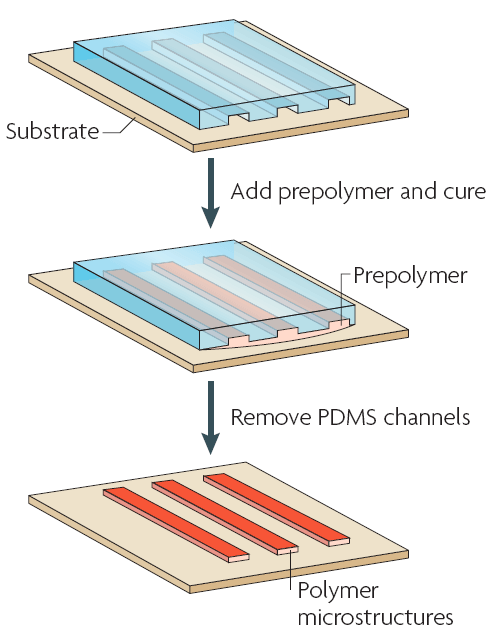 PDMS soft lithography micromolding in capillaries