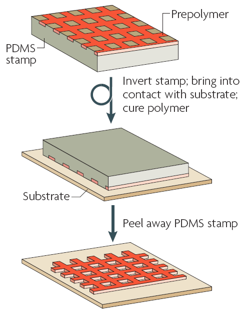 PDMS soft lithography microtransfer molding
