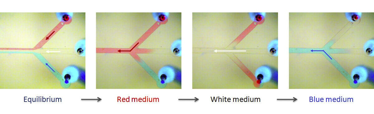 Microfluidic fast medium switch