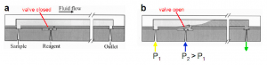 Pneumatic PDMS Quake valves and co - Check microvalve