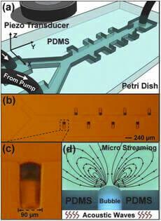 acoustic microfluidic micro mixer