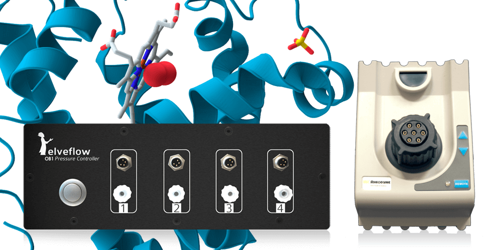 Injection platform for proteomics - protein array and enzymatic assay