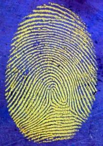 Tutorial-glass-PDMS-plasma-bonding-Finger-print