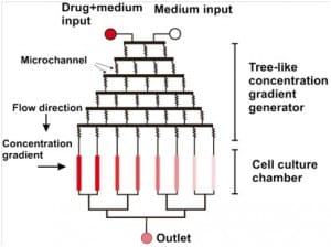 Microfluidics as a tool for drug delivery