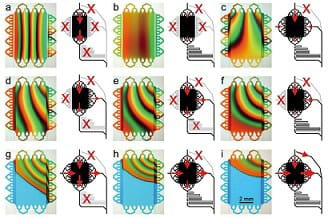 Microfluidics gradient