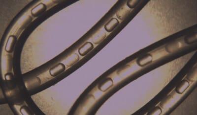 Microfluidic Droplets in capillary