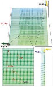 Selimovic et al - non linear microfluidic gradients generator