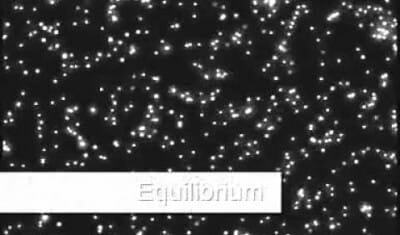Microfluidic Zero flow
