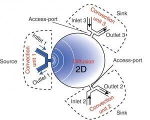 cross channel microfluidic gradient generator