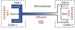 cross channel microfluidic gradient generator
