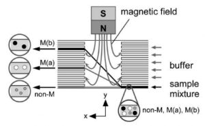 Bulk magnets for continuous microfluidic particle sorting