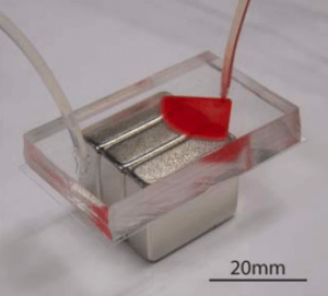 Magnetic microfluidic particle sorting using bulk magnets