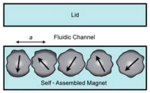 Permanent magnets for microfluidic particle sorting