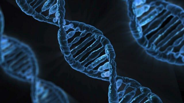 Microfluidics for DNA analysis_DNA