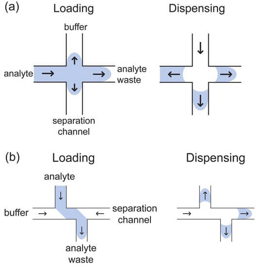 Microfluidics for DNA analysis_Microchip Electrophoresis Floating & Double T injection modes