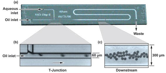 Microfluidics for DNA analysis_digital qPCR