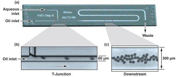 Microfluidic PCR, qPCR, RT-PCR & qRT-PCR_digital qPCR
