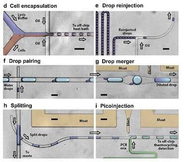 Microfluidic PCR, qPCR, RT-PCR & qRT-PCR_microfluidic droplet single cell RT PCR analysis