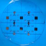 electrophoresis plug and play microfluidic setup