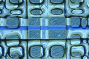 DIFLUSEL-nanofluidic-electro-concentration-elisa-assays-microfluidic-research-project