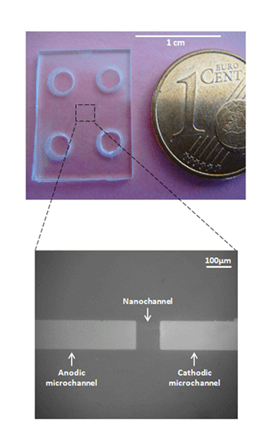 Diflusel Nanofluidic electro-concentration designed to replace elisa assay