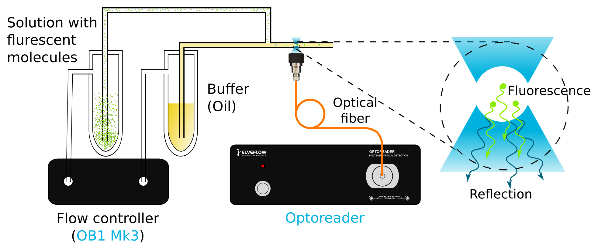 droplet generation fluorescence measurement optoreader Ob1