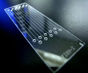 lab-on-a-chip-perspectives