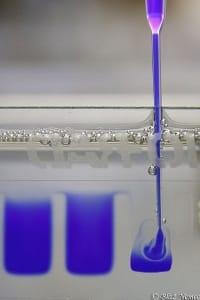 electrophoresis-microfluidics