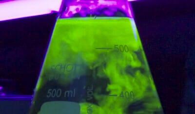 Fluorescence probe