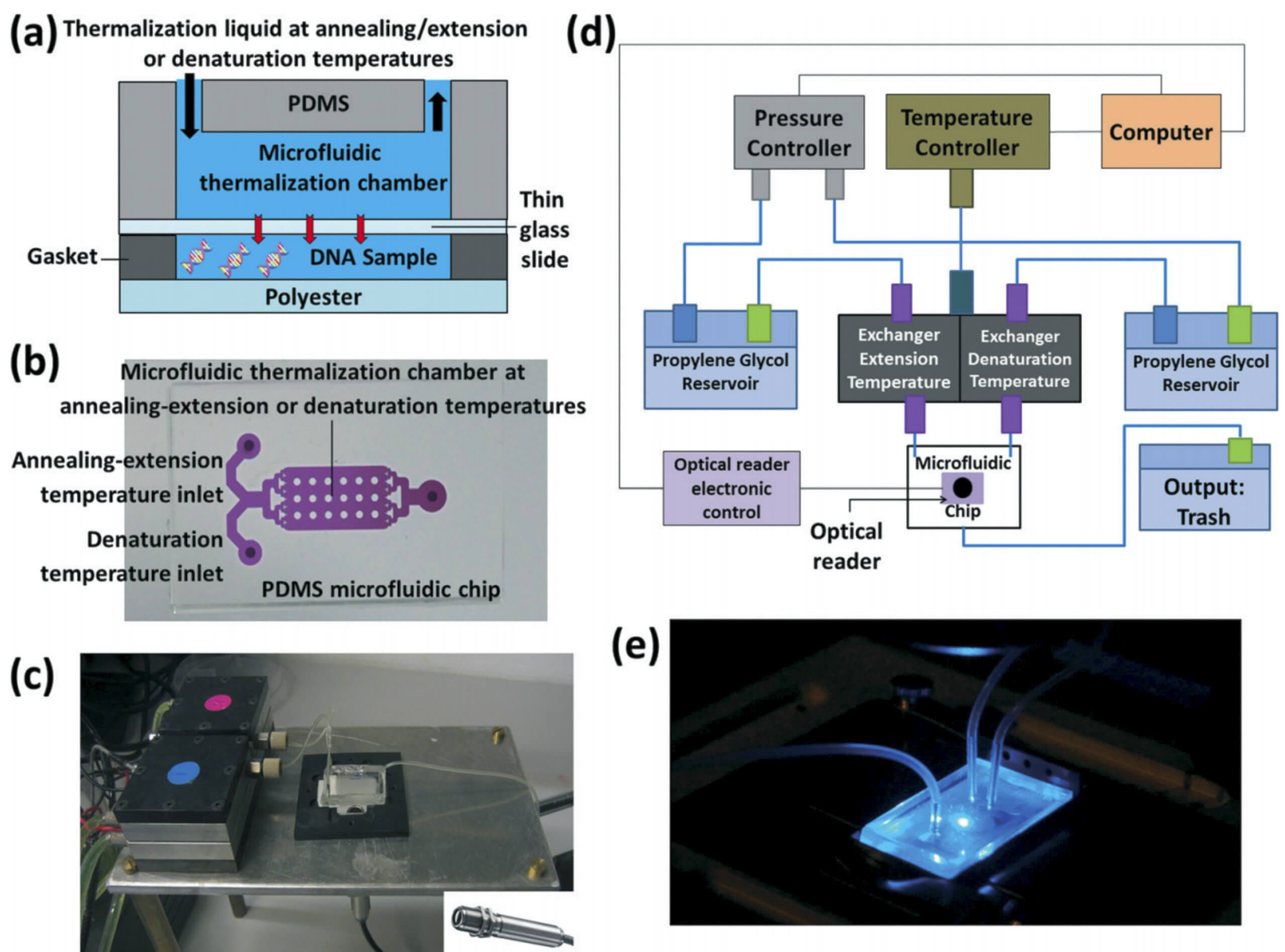 Ultra-fast microfluidic, sensitive and large-volume on-chip real time quantitative PCR (QPCR)