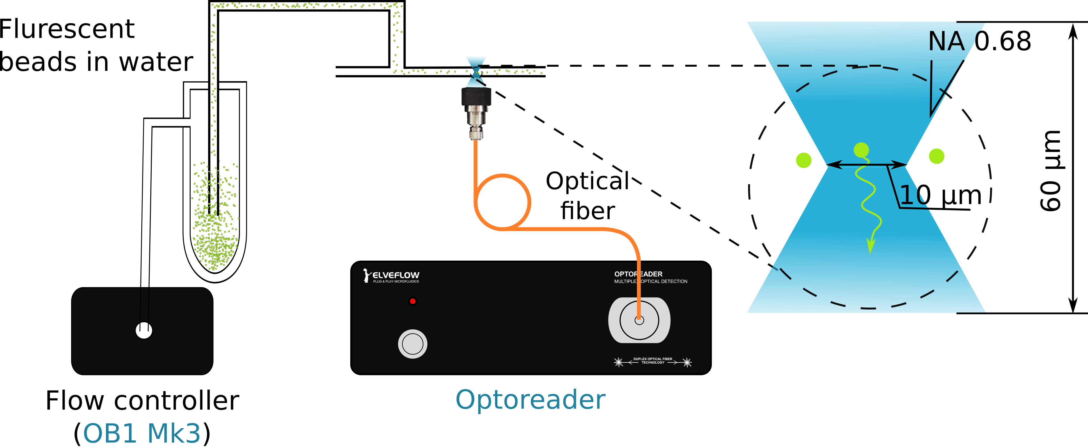 Fluorescence particle detection with OptoReader and Ob1