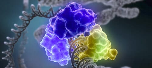 Microfluidic-Molecular-machines-for-DNA-repair-The-DNAREPAIRMAN-Project-4