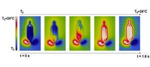 Temperature-profile-of-Fastgene-microfluidic-chip-thermal-uniformity-of-0.03-Cdc