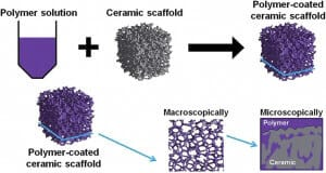 3D cell culture methods and applications - a short review-SCAFFOLDS TYPES IN 3D CELLS CULTURES-Other types of scaffold-composite scaffold!