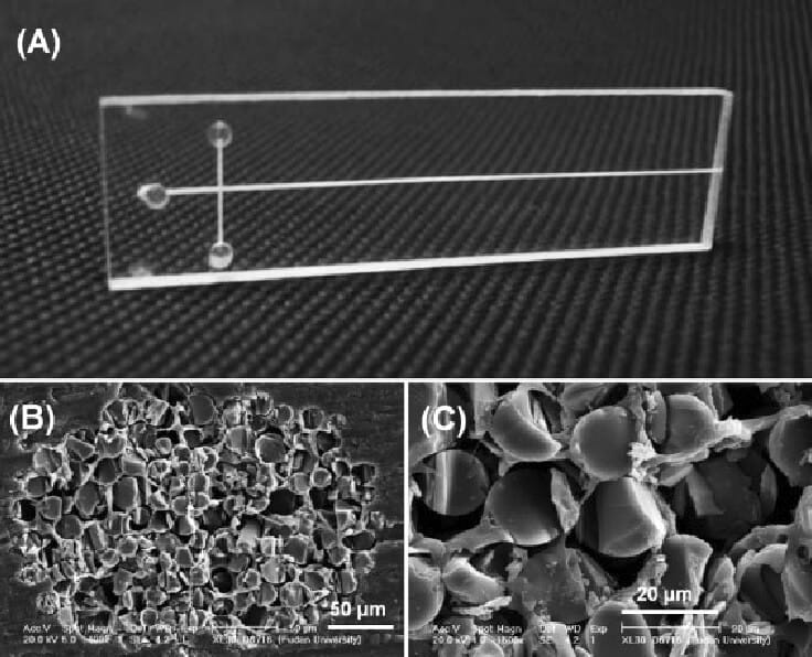 Photograph of a typical fiber electrophoresis microchip and SEM images of the cross-section of a fiberglasspacked microchannel in the PMMA substrate at magnifications of (B) 400 and (C) 1500-from Chen et al. 2008